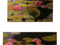 waterlilies3.jpg